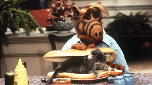 Sitcom-Kult der 1980er Jahre: Alf mit einem Katzensandwich