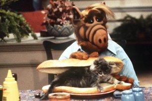 """Sitcom-Kult der 1980er Jahre: Alf mit einem """"Katzensandwich"""""""