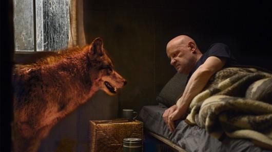 Zwei einsame Wölfe im Spreewald: Kommissar Krüger (Christian Redl) und der Wolf.